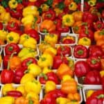 market-fresh-1318340